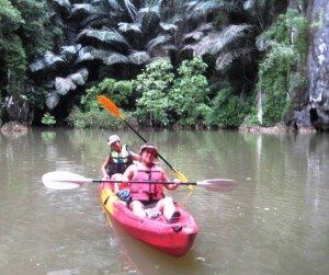 Kayaking at Bor Thor - caves and mangroves!